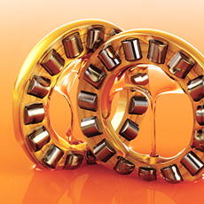 Bearings In Orange Oil